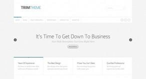Trim WordPress 企業架站版型主題