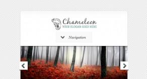 Chameleon WordPress 企業架站版型