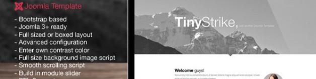 TinyStrike——多用途Joomla模板