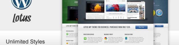 Lotus – For 企業商務 Software 公司企業產品作品展示